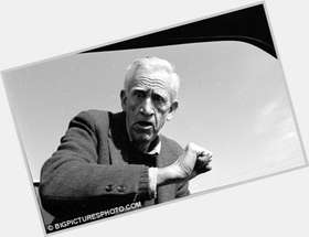 "<a href=""/hot-men/j-d-salinger/is-he-jd-still-alive-holden-caulfield-girl"">J D Salinger</a> Average body,  dark brown hair & hairstyles"